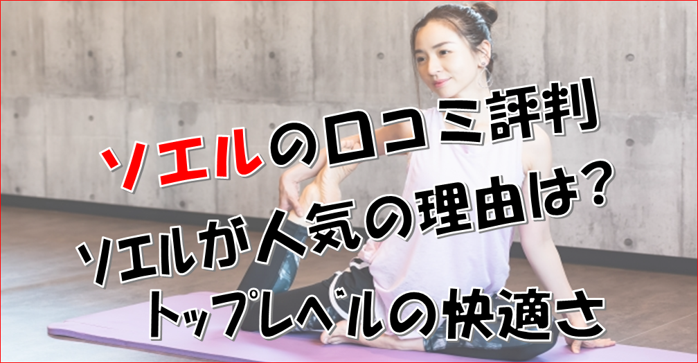 SOELU(ソエル)の口コミ評判【最新版】料金なども徹底解説